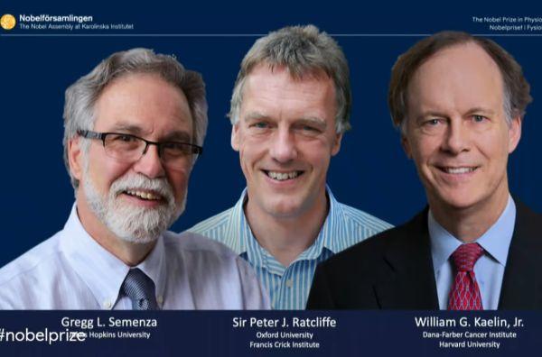 Трима учени получиха Нобелова награда за механизма на един от най-важните адаптативни процеси на живота