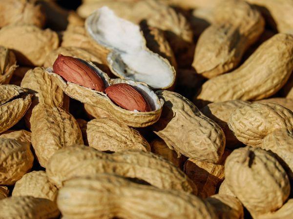 ЕМА разреши ново лекарство за алергия към фъстъци при деца