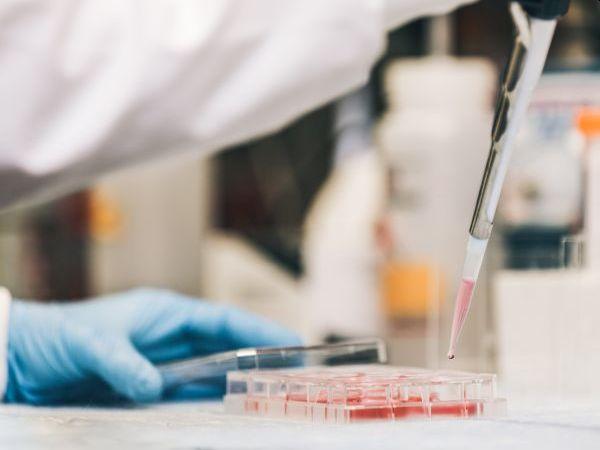 Персонализирана медицина в онкологията