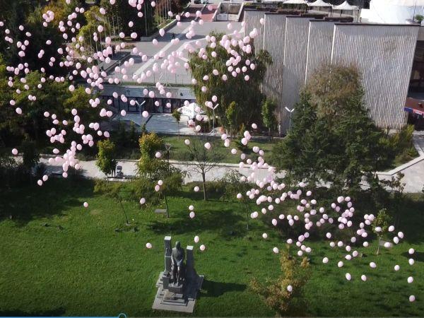 1200 розови балона полетяха в небето над София в памет на жените, загубили битката с рака на гърдата