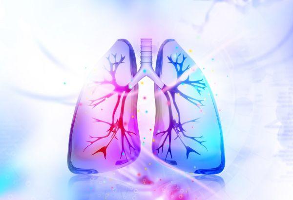 НДК светва в синьо за  Световния ден на пулмоналната хипертония