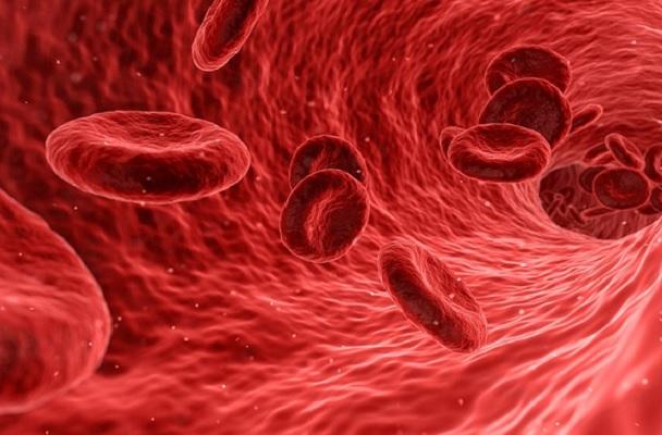 30% от донорската кръв е платена