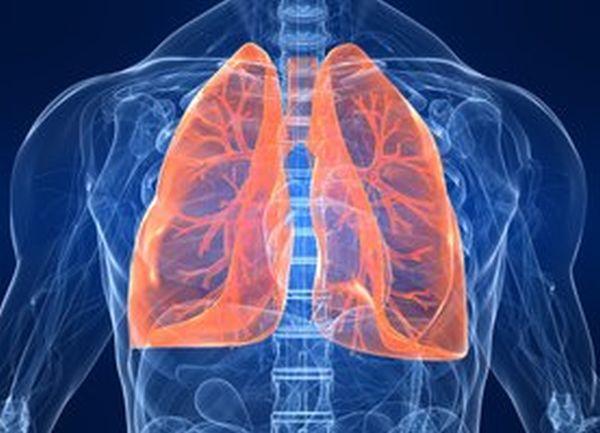 185 души прегледаха белите си дробове в рамките на кампания в столицата