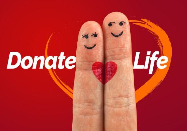 5,54  на 1 млн. души са били донорите у нас за последните пет години
