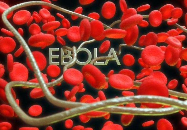 Одобрена е първата ваксина срещу ебола