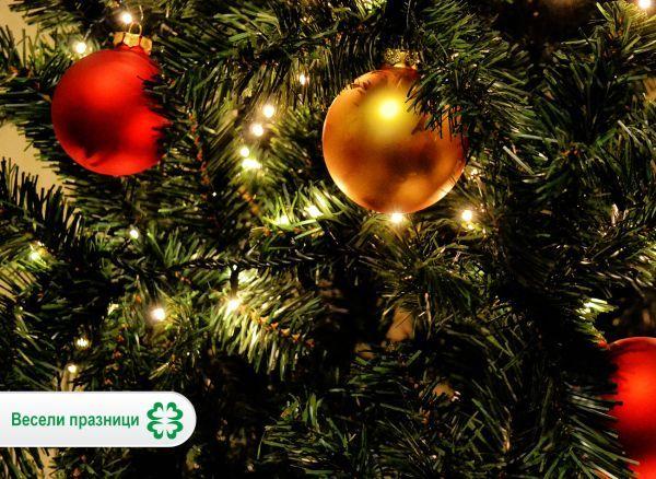 Весела Коледа от екипа на Zdrave.net!
