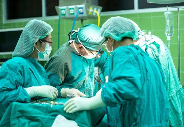 Поведението на хирурзите в операционната е като на всички други примати