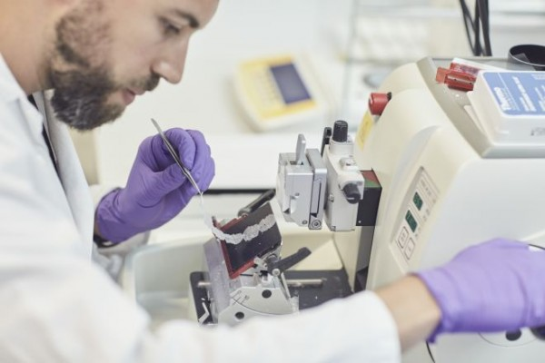 Научни доказателства за намален риск: Клинична оценка
