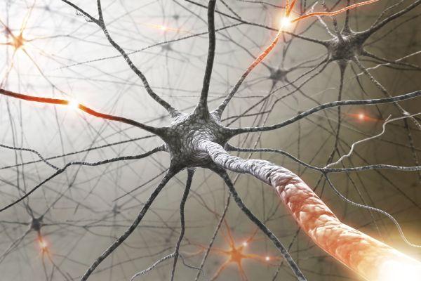 БАНМХ и БЛС дават четири стипендии на млади лекари за безплатно участие в националния конгрес на Асоциацията по невросонология